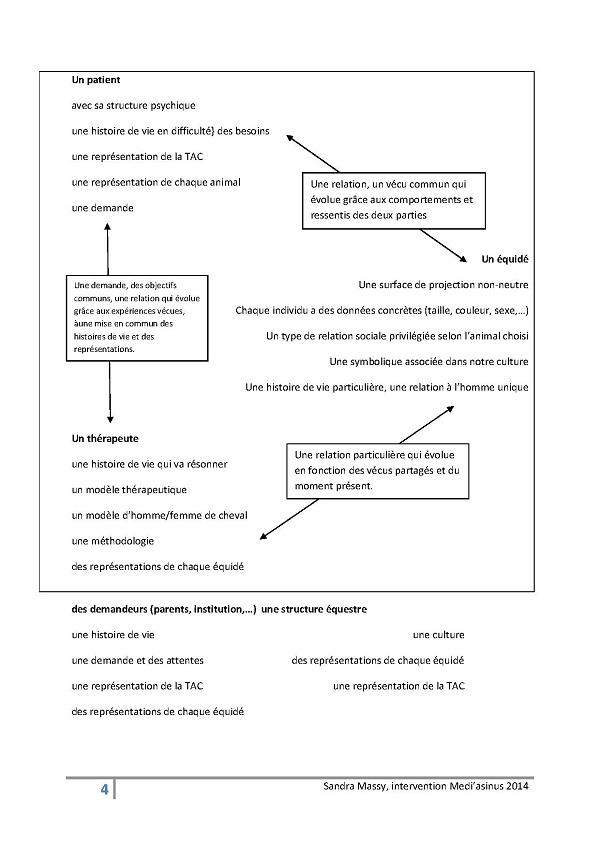 Sandra Massy reésumé + intervention à Médiasinus 2014-1
