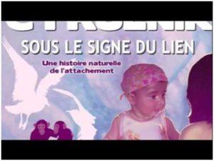Sous le signe du lien - B Cyrulnick - Résilienfance Bordeaux Médiation Animale